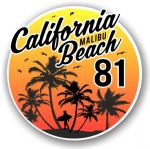 California Malibu Beach 1981 Surfer Surfing Design Vinyl Car Sticker Decal  95x95mm